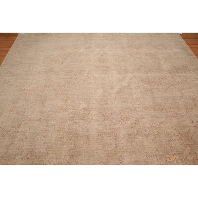Holborn One-of-a-Kind Pile Traditional Oriental Hand-Knotted Wool Gray Area Rug