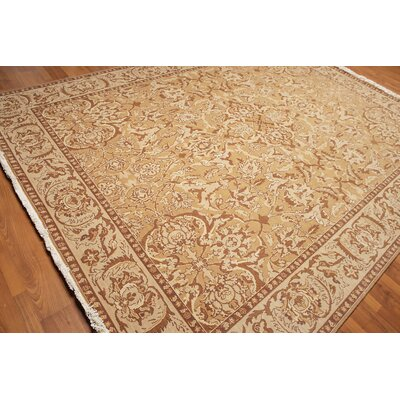 Montagu One-of-a-Kind Traditional Oriental Hand-Knotted Wool Tan Area Rug