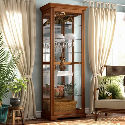 Logan Ryleigh Lighted Curio Cabinet Color: Golden Oak