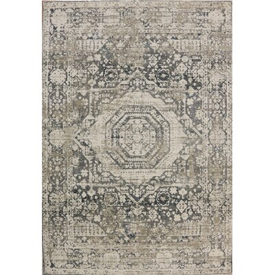 Rademacher Cream/Gray Area Rug Rug Size: Rectangle 67 x 91