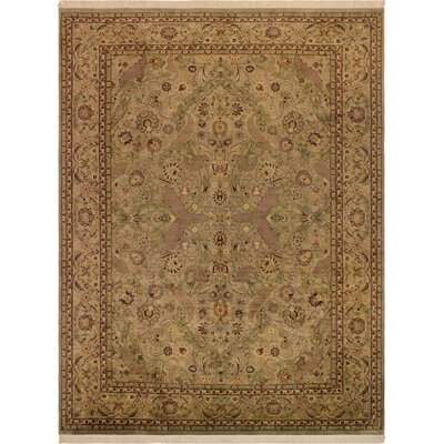 One-of-a-Kind Delron Hand-Knotted Wool Light Green/Light Brown Area Rug