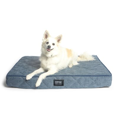 Cesar Millan Ortho Sleeper Dog Mat