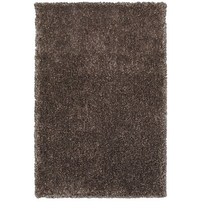 Holweg Brindle Hand-Tufted Brown Area Rug Rug Size: Rectangle 5 x 79