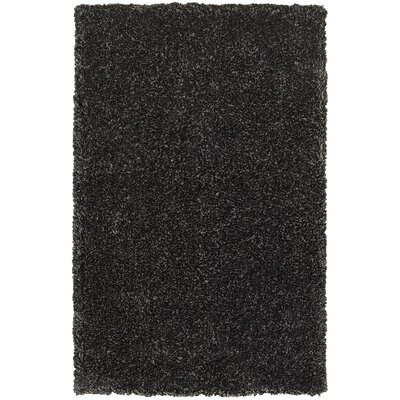Holweg Hand-Tufted Black Area Rug Rug Size: Rectangle 8 x 10