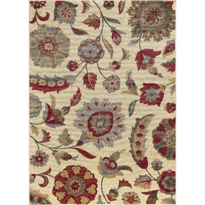 Kardos Transitional Floral Ivory Area Rug Rug Size: Rectangle 5 x 7
