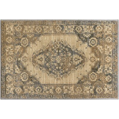 Falken Transitional Border Ivory Area Rug Rug Size: Rectangle 2 x 3