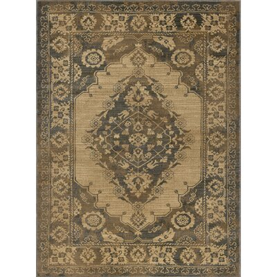 Falken Transitional Border Ivory Area Rug Rug Size: Rectangle 9 x 12