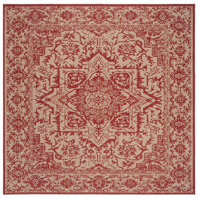 Burnell Red/Creme Area Rug Rug Size: Square 6'7