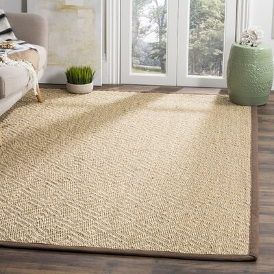 Hannan Aqua/Ivory Area Rug Rug Size: Rectangle 51 x 76
