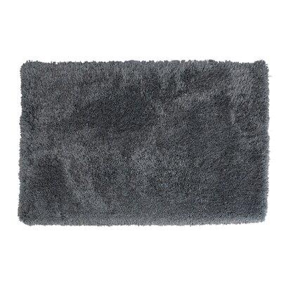 Koselig Slate Area Rug Rug Size: Rectangle 6 W x 4 L