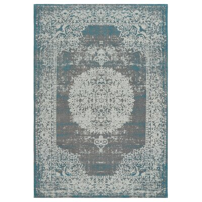 Axelrod Distressed Gray/Turquoise Area Rug Rug Size: Rectangle 78 x 99
