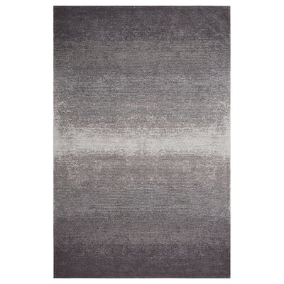 Axelrod Distressed Gray/Beige Area Rug Rug Size: Rectangle 78 x 99