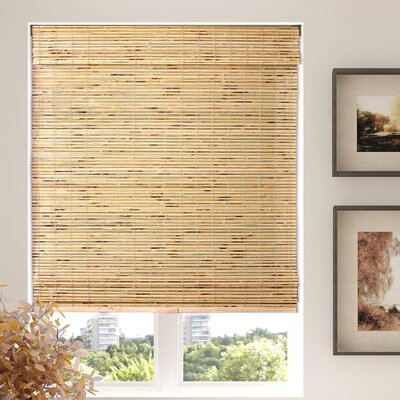 Aymeric Semi-Sheer Brown Roman Shade Blind Size: 23 W X 60 L