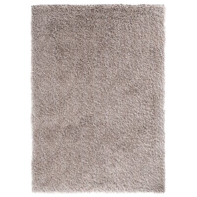 Ramhit Shag Taupe Area Rug Rug Size: Rectangle 5 x 7