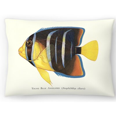 Young Angelfish Lumbar Pillow Size: 14 x 20