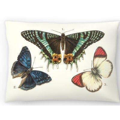 3 Butterflies Lumbar Pillow Size: 14 x 20