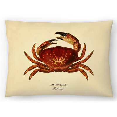 Mud Crab Lumbar Pillow Size: 10 x 14