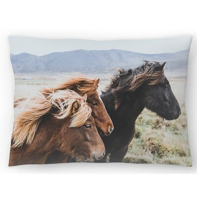Eastern Region Iceland Lumbar Pillow Size: 10 x 14
