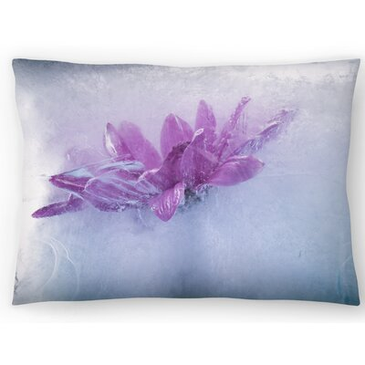 Head in the Clouds Lumbar Pillow Size: 14 x 20