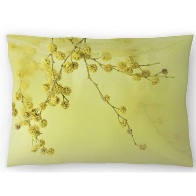 Floating in Sunshine Lumbar Pillow Size: 14 x 20