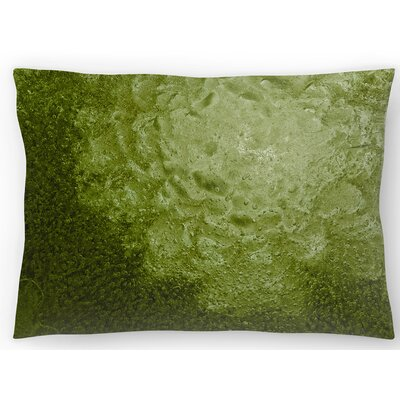 Nebula Lumbar Pillow Size: 14 x 20