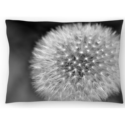 Divine Design Lumbar Pillow Size: 10 x 14
