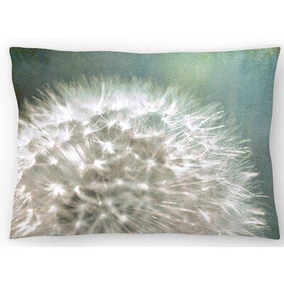 Quiet Loud Lumbar Pillow Size: 14 x 20