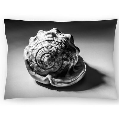 Shell Number 3 Lumbar Pillow Size: 10 x 14