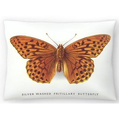 Fritillary Butterfly Lumbar Pillow Size: 10 x 14
