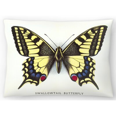 Swallowtail Butterfly Lumbar Pillow Size: 10 x 14
