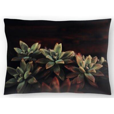Succulent Lumbar Pillow Size: 14 x 20