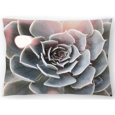 Shiny Succulent Lumbar Pillow Size: 14 x 20