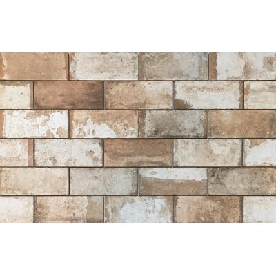 Havana 8 x 8 Porcelain Field Tile in Cohiba