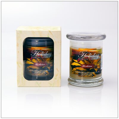 Holiday Mistletoe Scented Jar Candle 696766184858