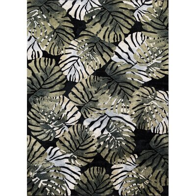 Skeen Tropical Black Area Rug Rug Size: Rectangle 67 x 93