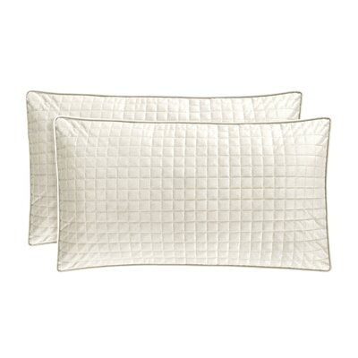 Baltasar Velvet Lumbar Pillow Color: Ivory