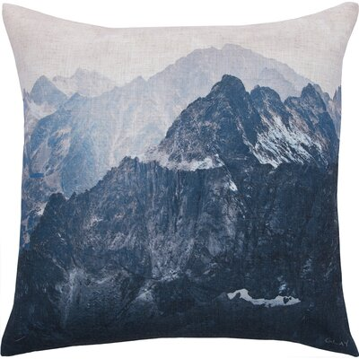 Weeden Decorative Throw Pillow