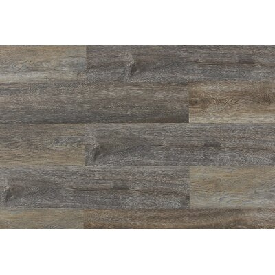 Paradiso 8 x 71 x 12mm Laminate Flooring in Belluno