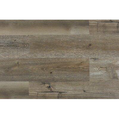 Paradiso 8 x 71 x 12mm Laminate Flooring in Luccio