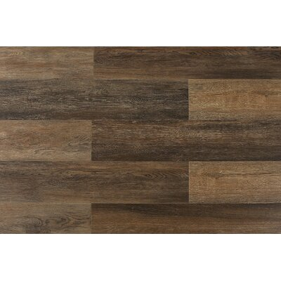 Paradiso 8 x 71 x 12mm Laminate Flooring in Saluzzo