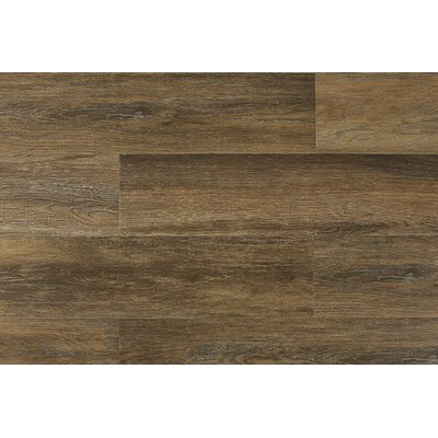 Paradiso 8 x 71 x 12mm Laminate Flooring in Veneto