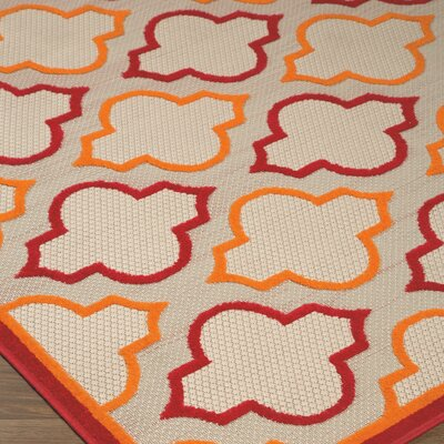 Pillow Red/Orange Indoor/Outdoor Area Rug Rug Size: Rectangle 53 x 75