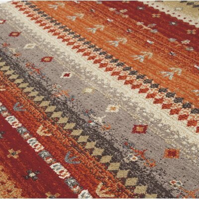 Reale Orange Area Rug Rug Size: Rectangle 5 x 7