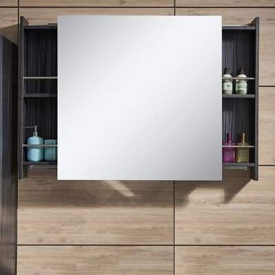 "Forest 31.5"" x 31.5"" Surface Mount Medicine Cabinet"