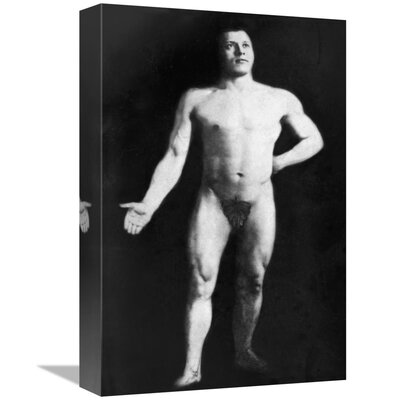 'Nude Bodybuilder' Photographic Print on Wrapped Canvas D06893565A8547648D8207BF0FC5509C