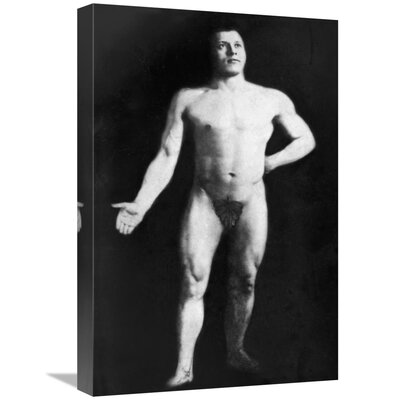 'Nude Bodybuilder' Photographic Print on Wrapped Canvas 335F5281CA9945179A81E0A20C2CE2A4