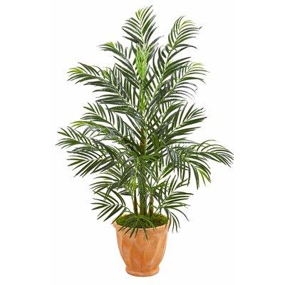 Areca Floor Palm Tree in Planter 0BD53CE38F4E42AF8F84134384567B9B