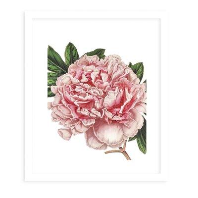 'Flower Five White' Framed Graphic Art Print