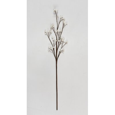 "Berry Stem (Set of 6) Size: 28"" H x 5"" W x 5"" D, Flower Color: White 4D2A2AE734F3405FB2C5B6F15A5579D5"