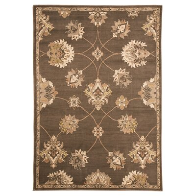 Baxter Brown Area Rug Rug Size: 5 x 8